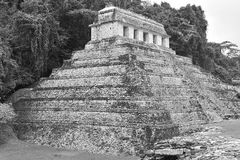 висок calakmul майяский Стоковая Фотография RF