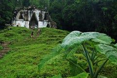 Висок Foliated креста/Palenque, Мексики Стоковое фото RF