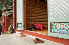 Висок Haedong Yonggungsa, Пусан Стоковые Фото