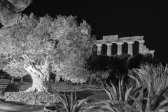 Висок Juno в парке Агриджента археологическом Стоковые Фотографии RF