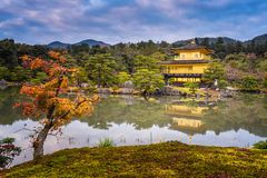 Висок Kinkakuji висок золотого павильона буддийский висок в Киото Стоковое фото RF