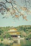 Висок Kinkakuji золотой павильон в Киото, Японии (фильтре Стоковые Фото