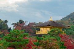 Висок Kinkakuji среди леса клена в осени Стоковые Фото