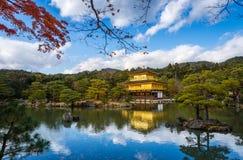 Висок Kinkakuji & x28; Золотое Pavilion& x29; с кленом осени в Kyot Стоковые Фотографии RF