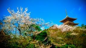 висок kiyomizu Стоковое Изображение RF