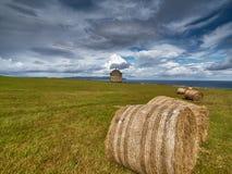 Висок Mussenden около Castlerock, Северной Ирландии Стоковая Фотография