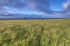 Висок Mussenden, покатый дом, Castlerock Стоковая Фотография RF