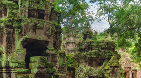 Висок Prohm животиков в Angkor, Siem Reap, Камбодже Стоковое Изображение