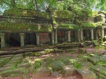 Висок Prohm животиков в Angkor, Siem Reap, Камбодже Стоковое Изображение RF