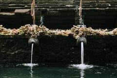 Висок Pura Tirta Empul bali Индонесия стоковые фотографии rf