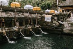 Висок Pura Tirta Empul bali Индонесия стоковое изображение