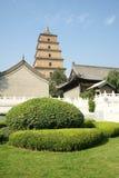 висок stupa Стоковые Фото