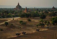 Висок Sulamani от верхней части пагоды Pyathatgyi на заходе солнца, bagan, области Мандалая, Мьянмы Стоковое Изображение
