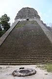 Висок v на Tikal, Гватемале, Центральной Америке Стоковая Фотография RF