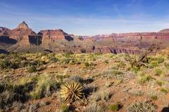 Висок Vishnu и северная панорама ландшафта оправы в национальном парке Аризоне гранд-каньона Стоковые Изображения