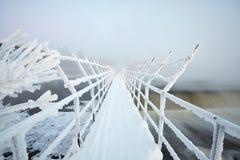 Висячий мост в заморозке Стоковое Фото