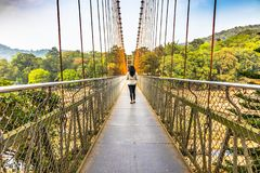 Висячий мост кабеля Ezhattumugham-Thumboormuzhi, Керала стоковое фото rf