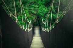 Висячий мост над каньоном джунглей, скрещивание веревочки стоковое изображение