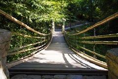 Висячий мост над ущельем стоковые изображения rf