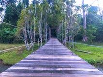 Висячий мост, пересекая реку с лесом стоковая фотография