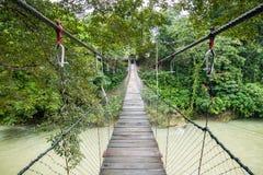 Висячий мост через реку Tangkahan в Tangkahan, Индонезии стоковая фотография rf