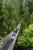 Висячий мост Capilano в Ванкувере Стоковая Фотография RF