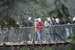 Висячий мост Capilano стоковые изображения