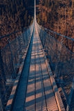 Висячий мост Geierlay Стоковые Фотографии RF