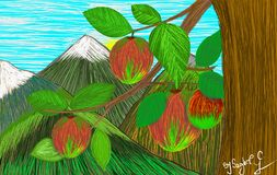 Вися вкусные яблоки Стоковое Фото