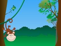 вися обезьяна Стоковые Изображения RF