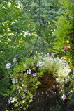 Вися орнаментальная корзина Стоковое Фото