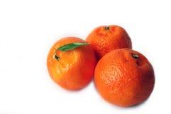 витамины Стоковое Фото