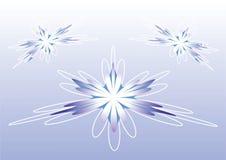 витать цветков Стоковые Фото