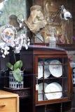 Витрина античного магазина с скульптурой, орхидеи в вазе и плиты в закрытом кухонном шкафе Стоковая Фотография