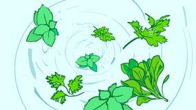 Вихрь шаржа красивый с зелеными цветами варить иллюстрация вектора