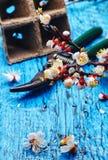 Вишневые цвета в апреле Стоковая Фотография RF