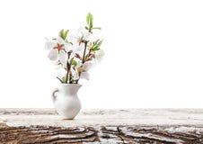 Вишневые цвета в белой вазе Стоковые Изображения RF