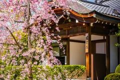 Вишневые цвета на двери Стоковое Изображение