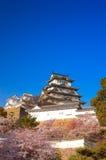 Вишневые цвета на Himeji рокируют в Himeji, Кобе, Японии Стоковое фото RF