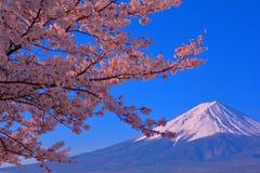 Вишневые цвета озера Kawaguchi и Mt Фудзи с голубым небом стоковое фото rf
