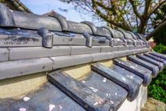 Вишневый цвет выходит отдыхать на традиционную японскую загородку Стоковое Фото