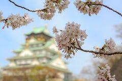 Вишневый цвет в замке Осака, Осака, Японии Стоковое Изображение RF