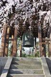 Вишневый цвет в святыне Zojo-ji - токио Стоковая Фотография RF
