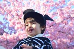 Вишневый цвет и ребенок Стоковая Фотография