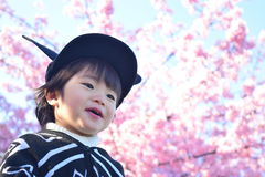 Вишневый цвет и ребенок Стоковые Фото