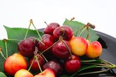 вишни Бинга более ненастные Стоковые Изображения