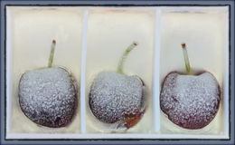 3 вишни в льде Стоковое Фото