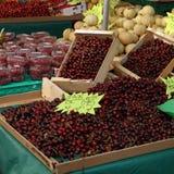 вишни зрелые Стоковые Фото