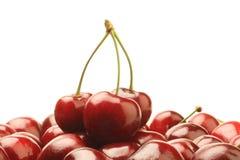 вишни зрелые Стоковое Фото
