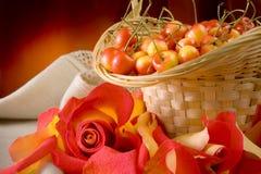 вишни зрелые Стоковые Изображения RF